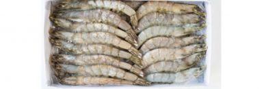 Креветка тигрова з головою с/м розмір 16-20 1 кг